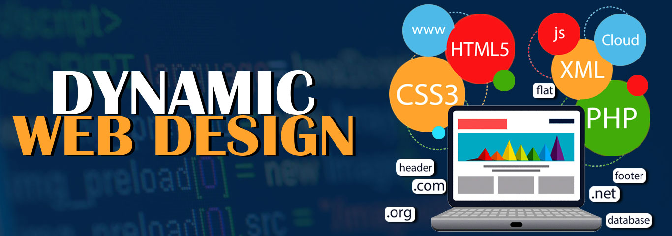 best web designing company in west delhi